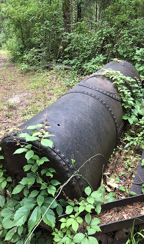 Discarded boiler in the woods.