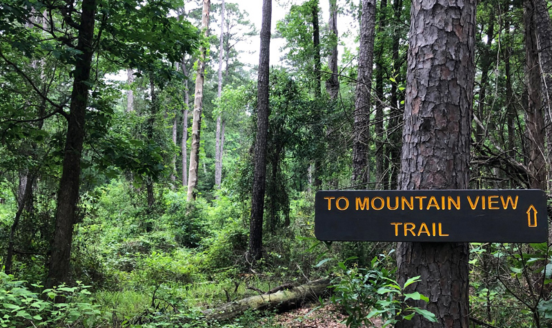 To Mountain View Trail sign.