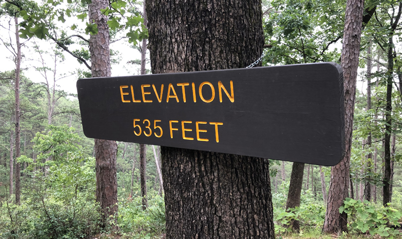 Elevation 535 feet sign.