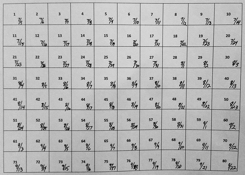 Grid for the 80-days challenge