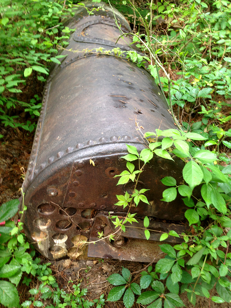 An old boiler or water heater in the woods.