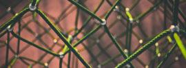Bungee cord matrix