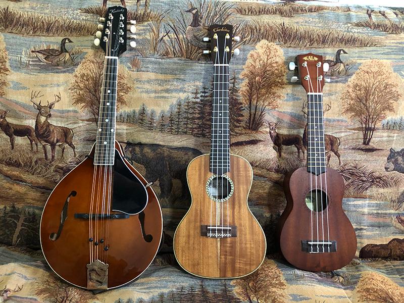 Mandolin and ukuleles.