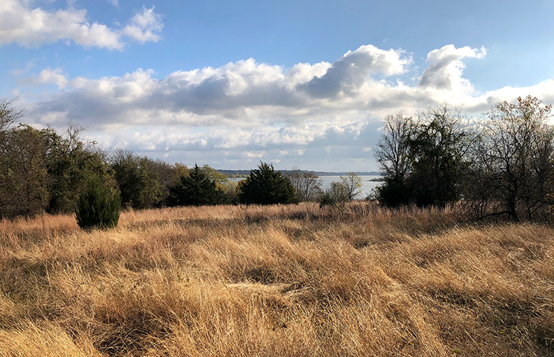 A meadow overlooking Grapevine Lake.