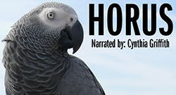 African Gray Parrot - Horus, Narrated by Cynthia Griffith