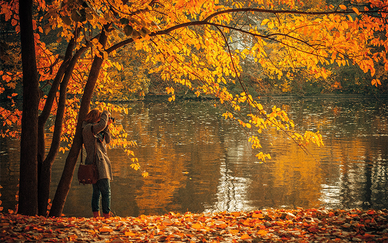 Woman taking a photo of autumn foliage