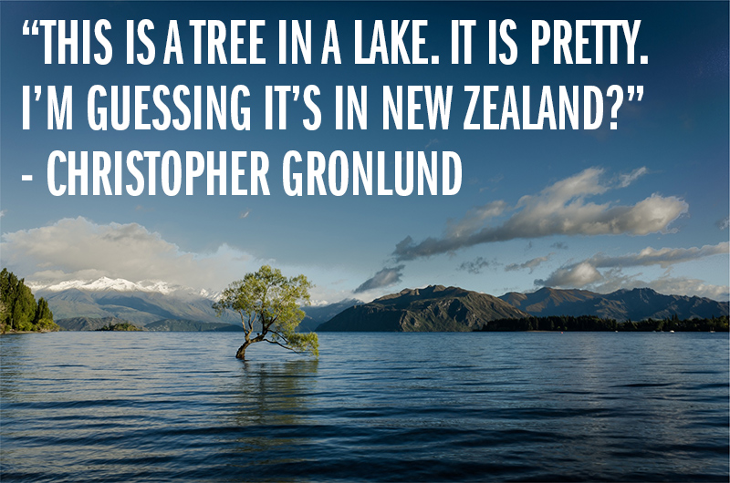 """This is a tree in a lake. It is pretty. I'm guessing it's in New Zealand?"" - Christopher Gronlund"