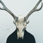 Person wearing skull and antlers